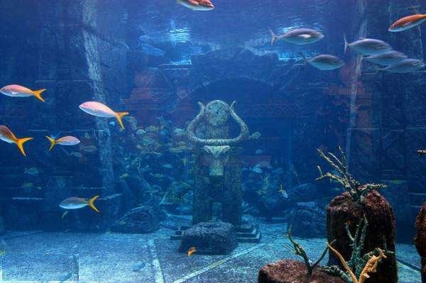 海底2.jpg